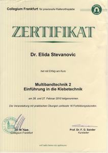 diplom2.png